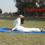Yoga for belly fat and weight loss