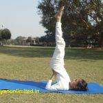 sarvangasana-steps-benefits-precaution
