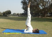 sarvangasana-steps-benefits-precaution