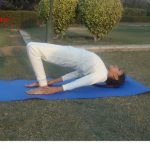 setubandhasana for back pain