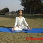 padmasana-steps-benefits-precaution
