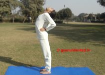 ardha-chakrasana-steps-benefits-precaution
