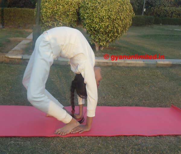 chakrasana-steps-benefits-precaution
