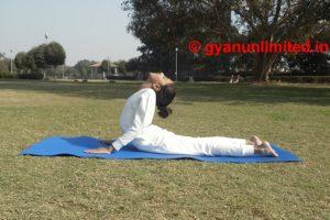 5 Easy Yoga for Back Pain