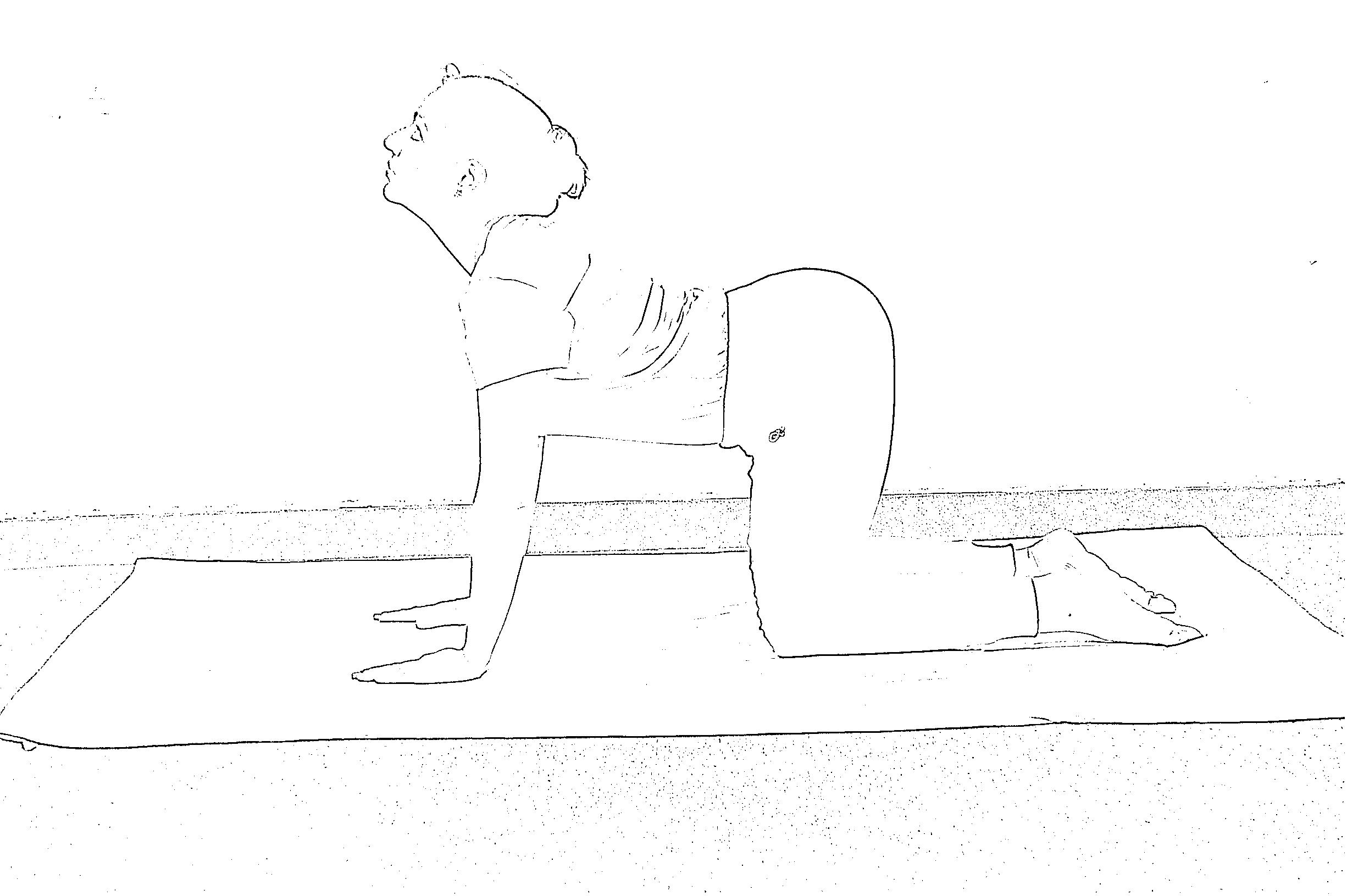 मार्जरी आसन योग विधि, लाभ और सावधानी (Marjariasana Steps, Benefits and Precautions)
