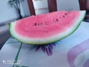 तरबूज के फायदे ही फायदे -10 wonder benefits of Watermelon in Hindi